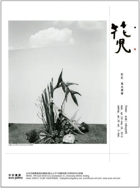 怎么样才能快速瘦腰_花儿——荒木经惟个展 | 中国画展网